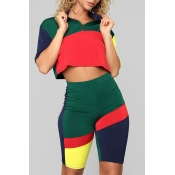 Lovely Euramerican Patchwork Black Green Two-piece Shorts Set
