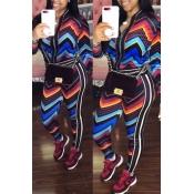 Lovely Euramerican Long Sleeves Printed Multicolor