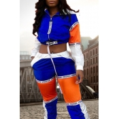 Lovely Casual Patchwork Multicolor Blending Two-piece Pants Set