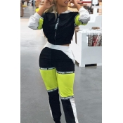 Lovely Casual Patchwork Black Blending Two-piece Pants Set