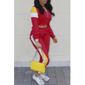 Lovely Casual Patchwork Bright Red Two-piece Pants Set