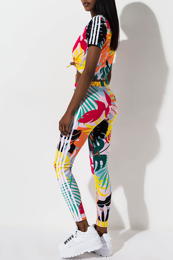 Lovely Casual O Neck Printed Multicolor Two-piece Pants Set