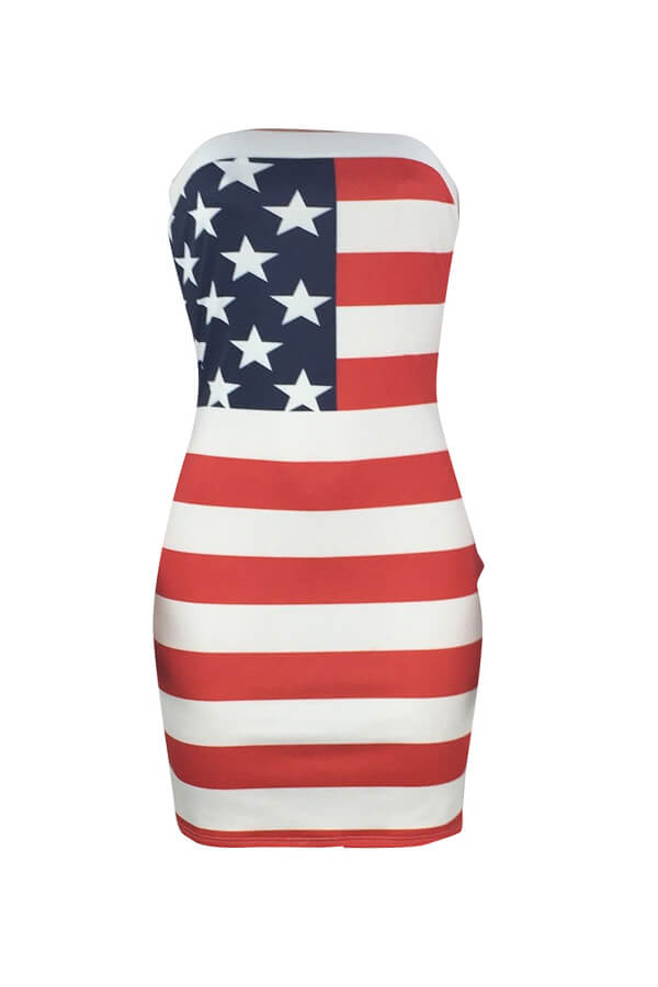 Lovely Independence Day Casual Printed Patchwork Multicolor Mini A Line Dress