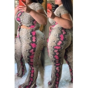 Lovely Casual Snakeskin Printed Plus Size Two-piec