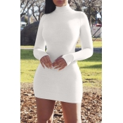 Lovely Casual Turtleneck Skinny White Mini Dress