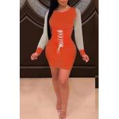 Lovely Casual O Neck Bandage Design Red Mini Dress
