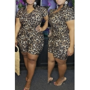 Lovely Casual Printed Black Plus Size Two-piece Sh