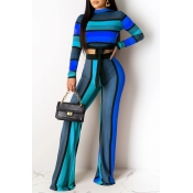 Lovely Casual Striped Knot Design Blue Two-piece P