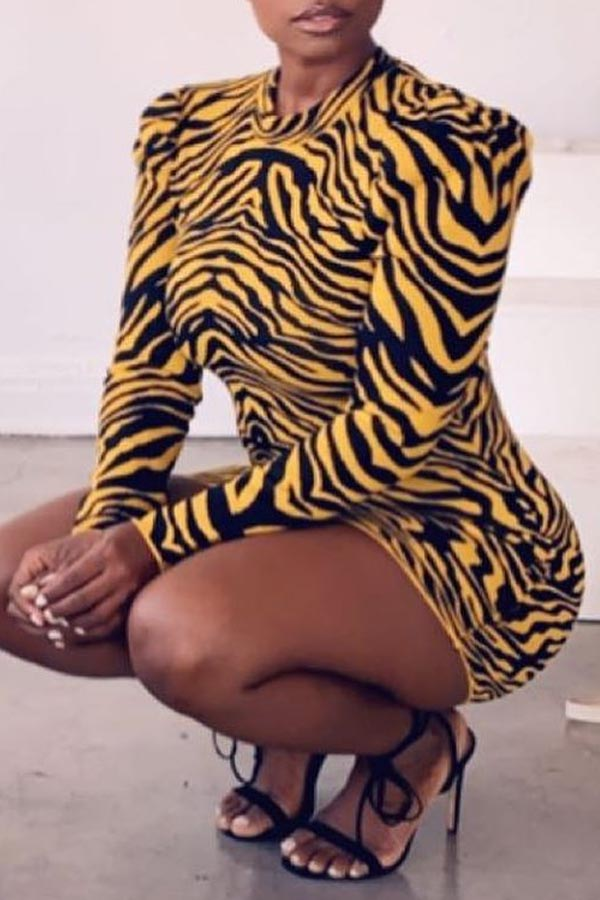 Lovely Casual Tiger Stripes Mini Dress
