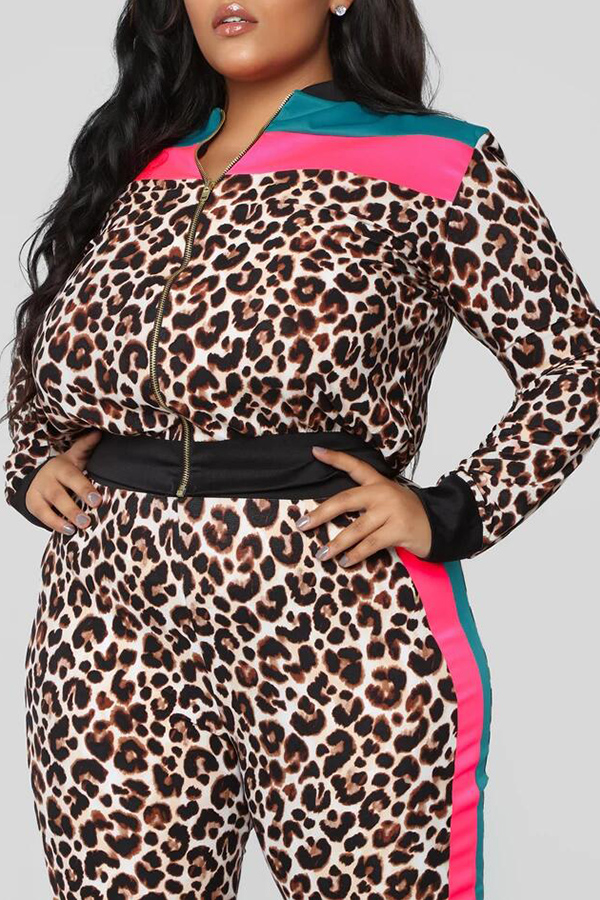 Lovely Casual Leopard Printed Plus Size Two-piece Pants Set