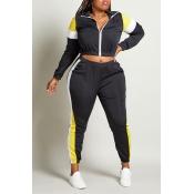 Lovely Sportswear Patchwork Black Plus Size Two-pi