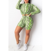 Lovely Casual Hooded Collar Printed Green Two-piece Shorts Set