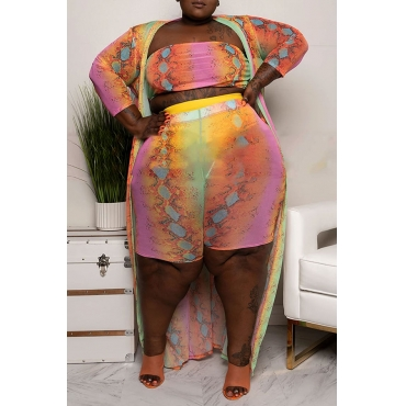 Lovely Casual Printed Multicolor Plus Size Two-Piece Shorts Set(With Coat)