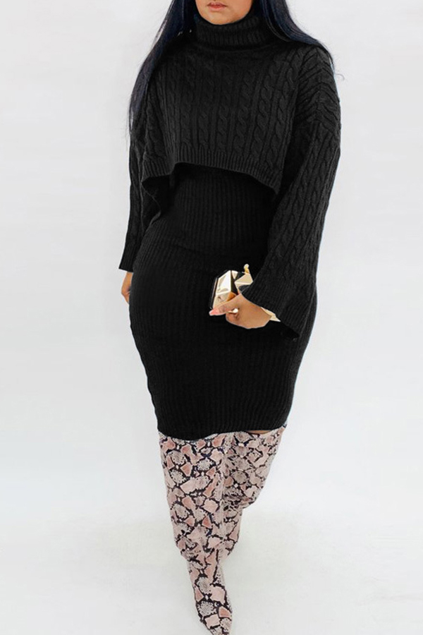 Lovely Casual Turtleneck Black Two-piece Skirt Set