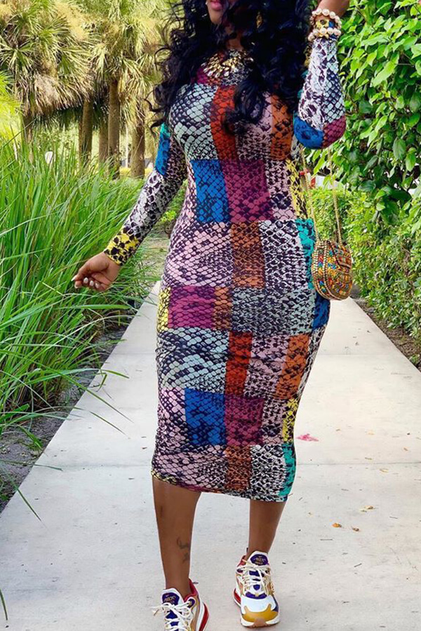 Lovely Casual Printed Multicolor Mid Calf Dress