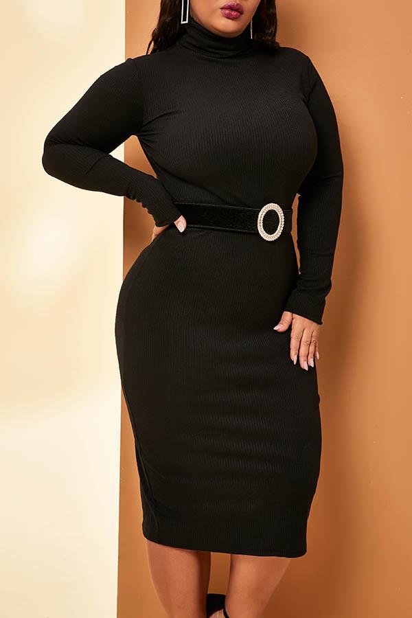 Lovely Casual Turtleneck Basic Black Knee Length Plus Size Dress