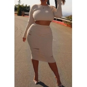 Lovely Casual Crop Top White Plus Size Two-piece S