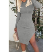 Lovely Leisure Turtleneck Skinny Grey  Knee Length