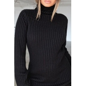 Lovely Casual Turtleneck Black Mini Dress
