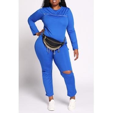 Lovely Casual Broken Holes Blue Plus Size Two-piece Pants Set