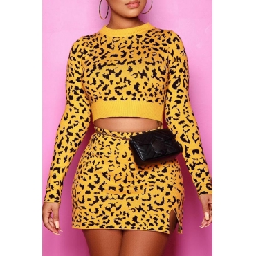 Lovely Casual Leopard Skinny Two-piece Skirt Set