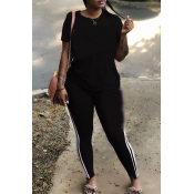 Lovely Casual Striped Black Plus Size Two-piece Pa