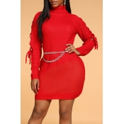 Lovely Chic Turtleneck Red Mini Dress