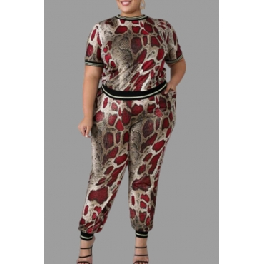 Lovely Casual Snakeskin Print Plus Size Two-piece Pants Set
