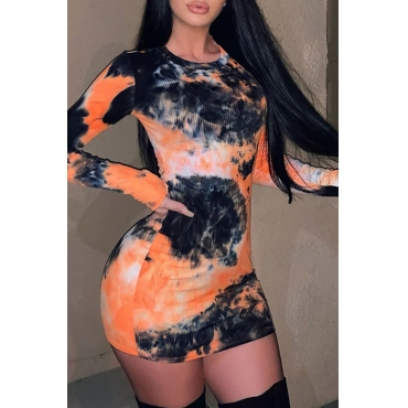 Lovely Chic Print Multicolor Mini Dress