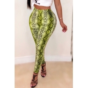 Lovely Trendy Print Green Pants