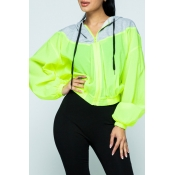 Lovely Casual Hooded Collar Patchwork Yellow Hoodi