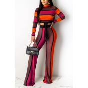Lovely Trendy Striped Red Two-piece Pants Set