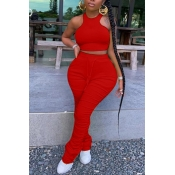 lovely Stylish Fold Design Red Plus Size Two-piece Pants Set
