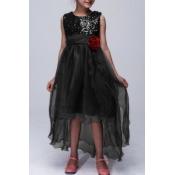lovely Trendy O Neck Patchwork Asymmetrical Black