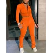 lovely Sportswear Zipper Design Patchwork CrociTw