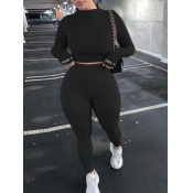 lovely Sportswear Basic Skinny Black Two Piece Pants Set