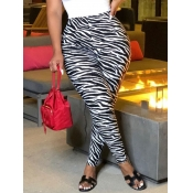 lovely Street Zebra Stripe Skinny Leggings