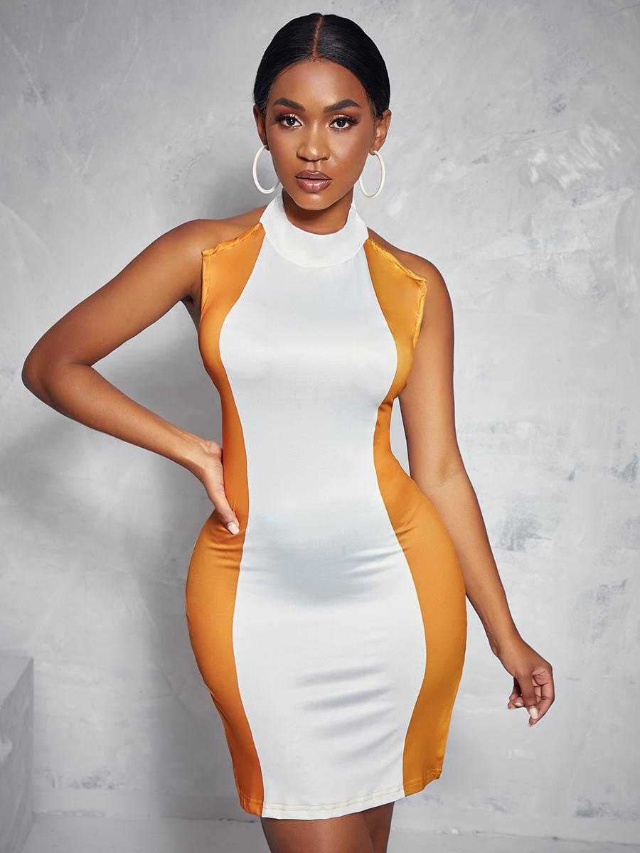 LW Turtleneck Color-lump Dress